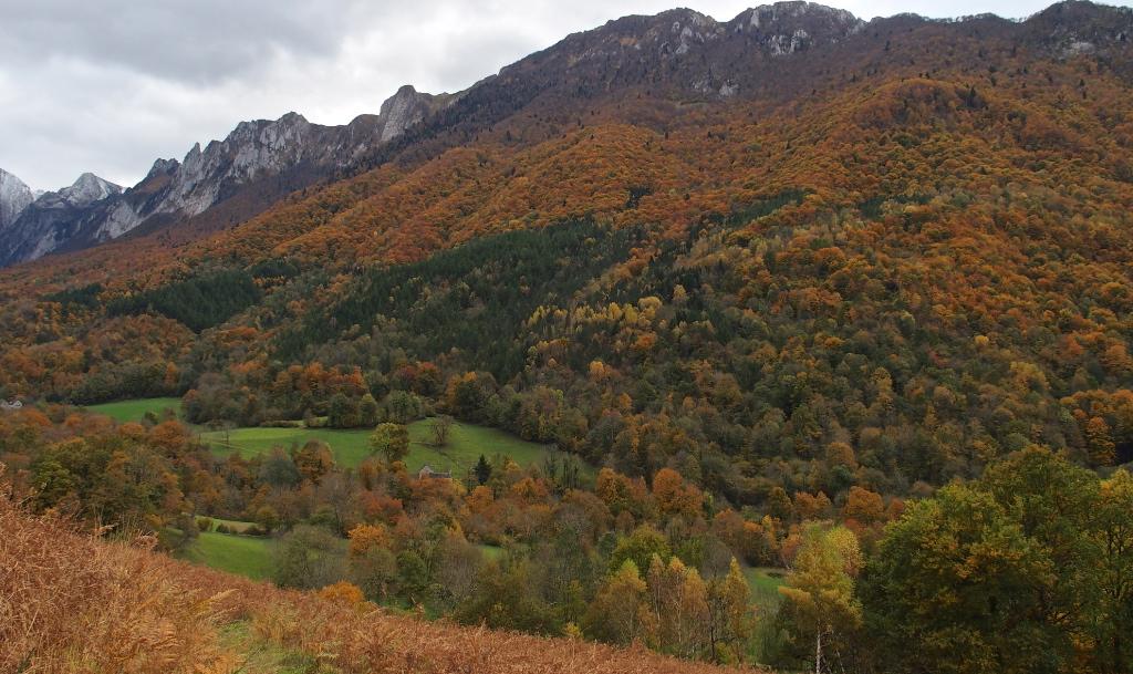 Arapoup Vallée Accous