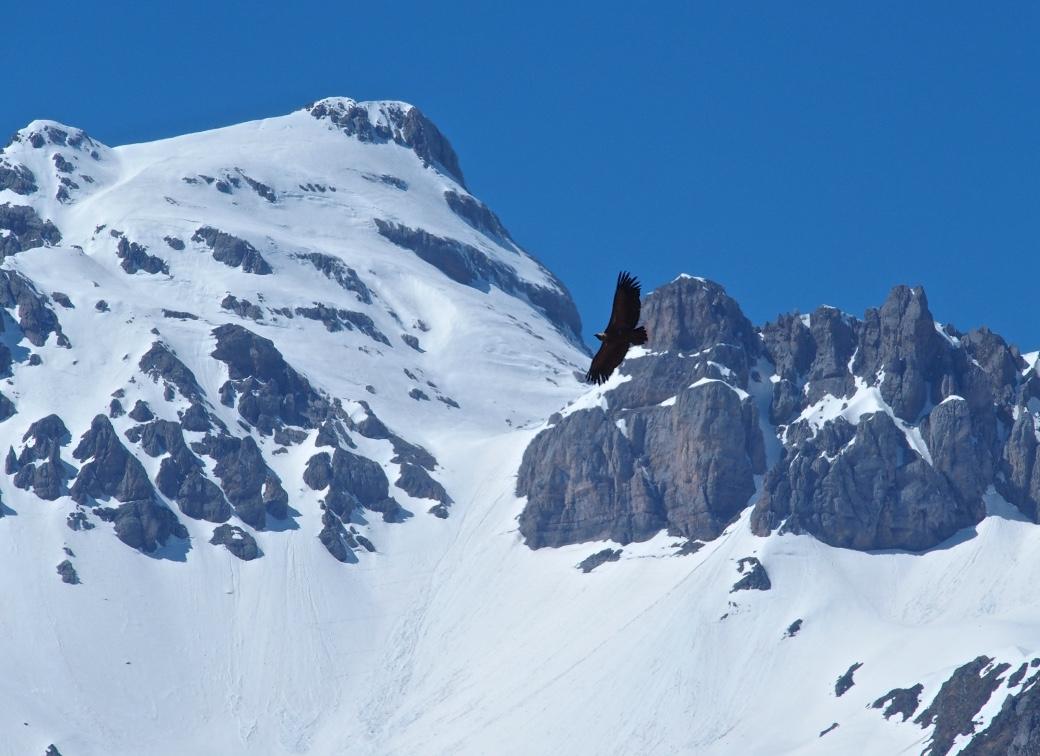 Pic d'Anie Pyrénées